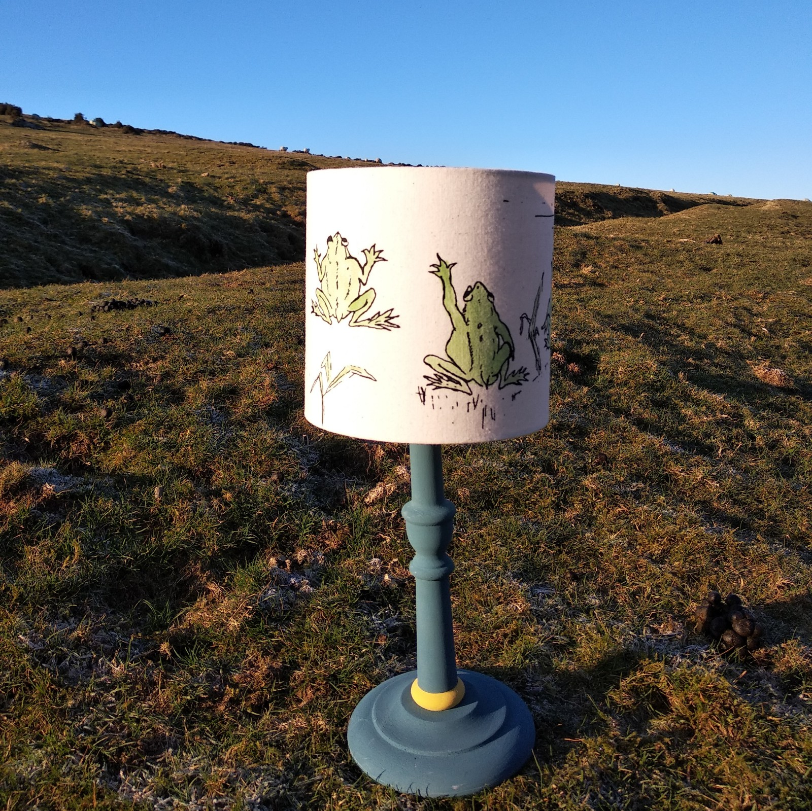 15 cm Lampshade Frogs Reach for the Sky
